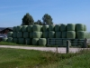 vyrp12_406wrapped_bales_003